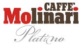Small Platino Logo
